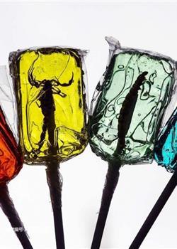 彩色方块棒棒糖